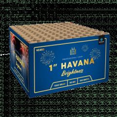 Havana (IDDV4520)